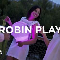 ROBIN - Newgarden